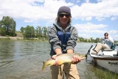 Montana 256